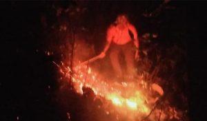 Perjuangan Petugas Padamkan Api di Hutan Kemlagi