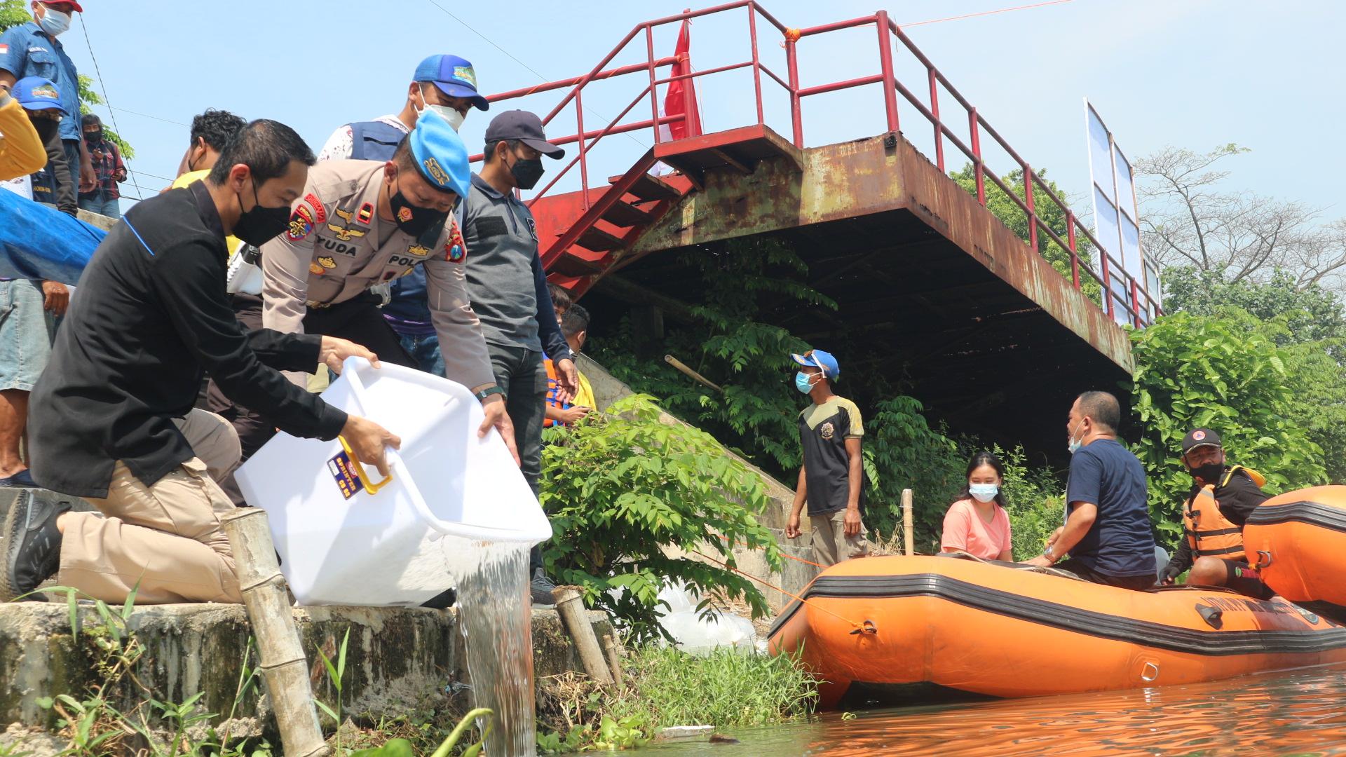 Jumlah Ikan Lokal Menurun, Gerakan Peduli Kali Brantas Tebar 10 Ribu Benih